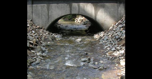 Michael Love and Associates, Inc. – aquatic-organism-passage-at-road-crossings
